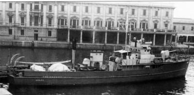 Azalea  401-1950